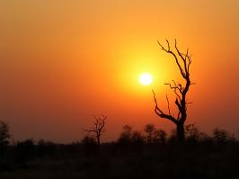Krugerpark - Sunset Landscape - 2014-08-29 - 01 copy PBase