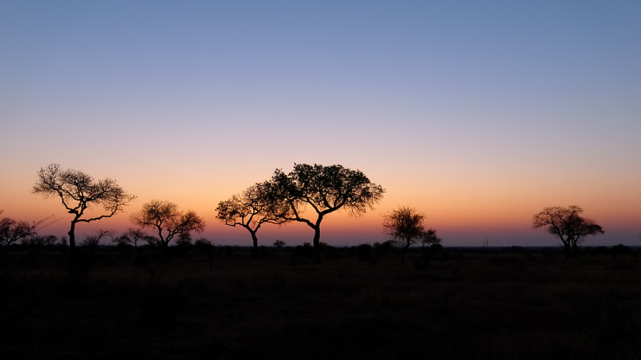 Krugerpark - Sunset Landscape - 2014-08-28 - 01 copy PBase